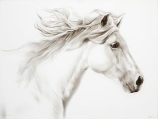 White Horse #2