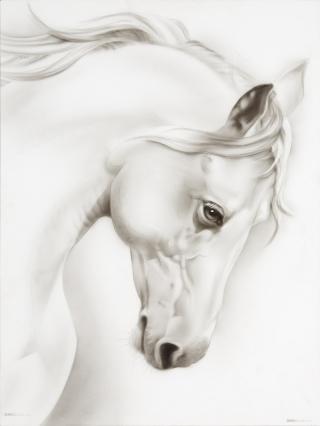 White Horse #3